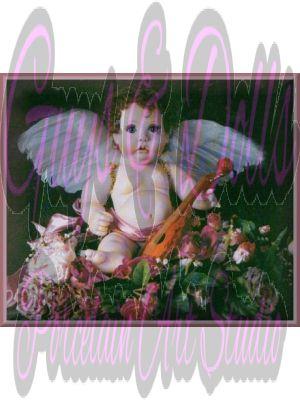 Sweet Charity   - 14